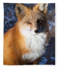 Red Fox Standing Fleece Blanket