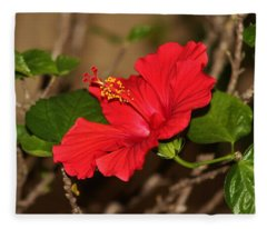 Red Hibiscus Flower Fleece Blanket