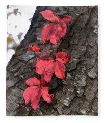 Red Leaves On Bark Fleece Blanket