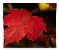Red Maple Leaf In Fall Fleece Blanket