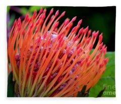 Red Pin Cushion Fleece Blanket