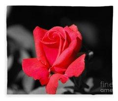 Red Red Rose - Sc Fleece Blanket