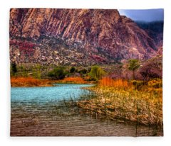 Red Rock Canyon Conservation Area Fleece Blanket