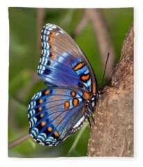 Red Spotted Purple Butterfly Fleece Blanket