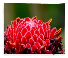 Red Torch Ginger Flower Head From Tropics Singapore Fleece Blanket