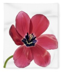 Red Transparent Tulip Fleece Blanket