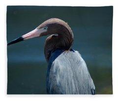 Reddish Egret 3 Fleece Blanket