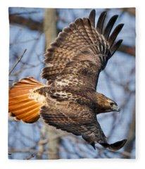 Redtail Hawk Square Fleece Blanket