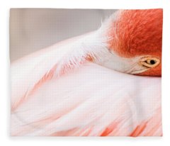 Resting Flamingo Fleece Blanket