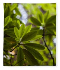 Rhododendron Leaves Abstract Fleece Blanket