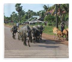 Road Buffalo Cows Fleece Blanket