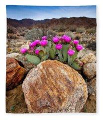 Rock And Beavertail Fleece Blanket