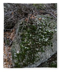 Rock With Lichen And Snow Fleece Blanket