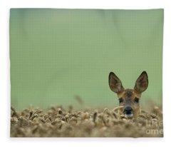 Roe Deer In A Field Fleece Blanket