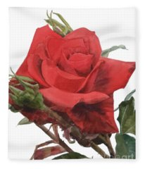 Watercolor Of A Single Red Rose On A Stem With Buds I Call Rose Jake Fleece Blanket