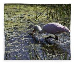 Roseate Spoonbill Ix Fleece Blanket