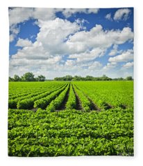 Rows Of Soy Plants In Field Fleece Blanket