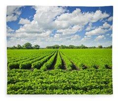 Rows Of Soy Plants In Field Fleece Blanket