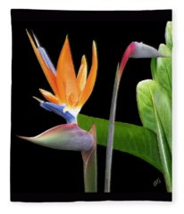 Royal Beauty II - Bird Of Paradise Fleece Blanket