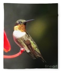Ruby Throated Hummingbird 2 Fleece Blanket