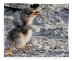 Running Free - Least Tern Fleece Blanket
