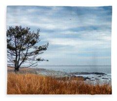 Fleece Blanket featuring the photograph Sachuest Winter Afternoon by Nancy De Flon