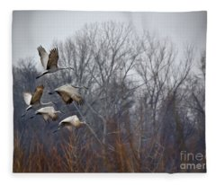 Sandhill Cranes Takeoff Fleece Blanket