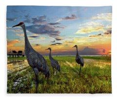 Sandhill Sunset Fleece Blanket