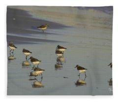Sandpiper Sunset Reflection Fleece Blanket