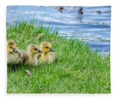 Staying Together Fleece Blanket