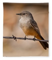 Say's Phoebe On A Barbed Wire Fleece Blanket