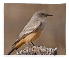 Say's Phoebe On A Fence Post Fleece Blanket