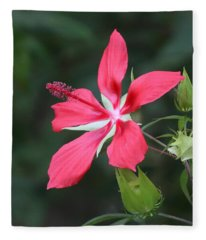 Scarlet Hibiscus #3 Fleece Blanket