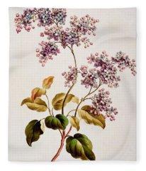 Scotch Lilac, Published 1793 Fleece Blanket