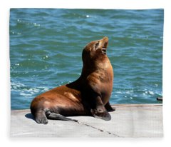 Sea Lion Posing On Boat Dock Fleece Blanket