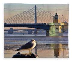 Seagull And Downtown Toledo Bridges 9163 Fleece Blanket
