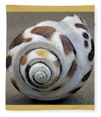 Seashells Spectacular No 2 Fleece Blanket