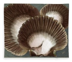 Seashells Spectacular No 22 Fleece Blanket