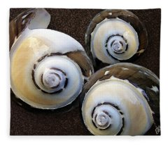 Seashells Spectacular No 23 Fleece Blanket