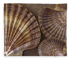 Seashells Spectacular No 7 Fleece Blanket