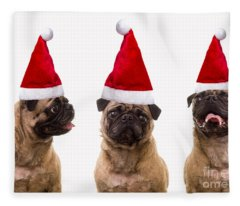 Seasons Greetings Christmas Caroling Pug Dogs Wearing Santa Claus Hats Fleece Blanket