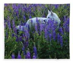 Sekani In Lupine Fleece Blanket