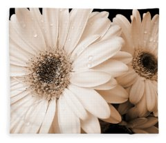 Sepia Gerber Daisy Flowers Fleece Blanket