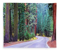 Sequoia Hwy Fleece Blanket