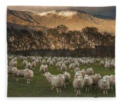 Sheep Flock At Dawn Arrowtown Otago New Fleece Blanket