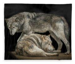 Shelter Fleece Blanket