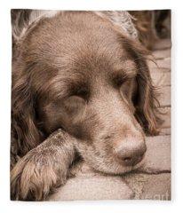 Shishka Dog Dreaming The Day Away Fleece Blanket