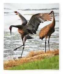Sandhill Crane Fleece Blankets