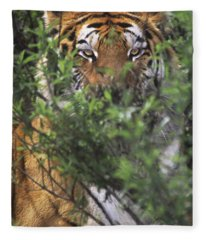 Siberian Tiger In Hiding Wildlife Rescue Fleece Blanket