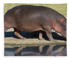 Side Profile Of A Hippopotamus Walking Fleece Blanket